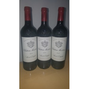Château Montrose 2010 (Bottle of 75 cl)